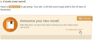 NaNoWriMo Screenshot